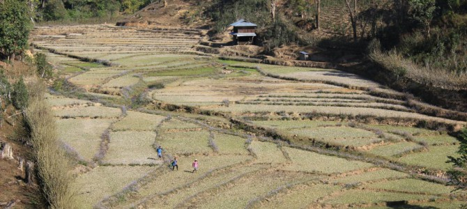 Hsipaw and our adventures with Mark